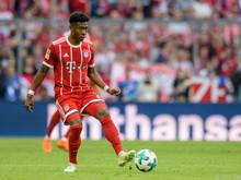Die Bayern bangen vor dem CL-Hit gegen Real um den Einsatz von David Alaba