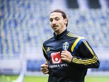 Zlatan Ibrahimovic will unbedingt zur EM