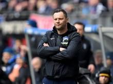 Wünscht sich mehr Zuschauer bei den Spielen von Hertha BSC: Trainer Pál Dárdai