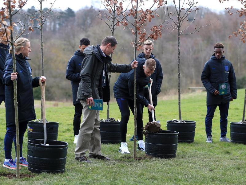 14 Bäume wurden gepflanzt, um an 14 englische Nationalspieler zu erinnern