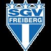 SGV Freiberg Herren
