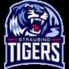 Straubing Tigers Herren