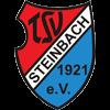 TSV Steinbach Herren
