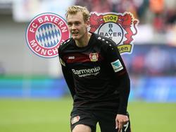 Leverkusens Julian Brandt ist beim FC Bayern im Gespräch