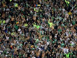 Die Fans von Atlético Nacional sind bereit für den zweiten Titel