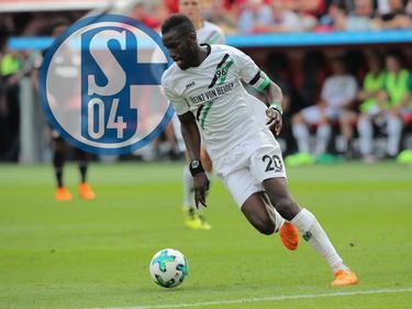 Salif Sané wechselt im Sommer zum FC Schalke 04