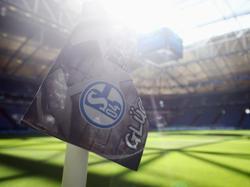 Schalke rührt die Werbetrommel in China