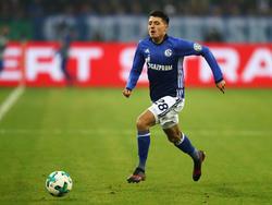 Alessandro Schöpf verlängert beim FC Schalke 04