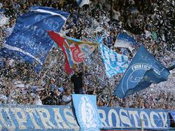 Einige Fans von Hansa Rostock haben ihrem Verein einen Bärendienst erwiesen