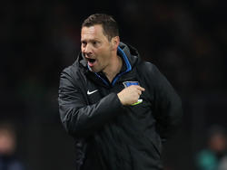 Pál Dárdai ist mit Hertha BSC aus der Europa League ausgeschieden