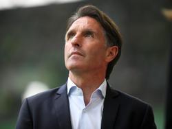 Bruno Labbadia bleibt nach dem Klassenerhalt Trainer beim VfL Wolfsburg