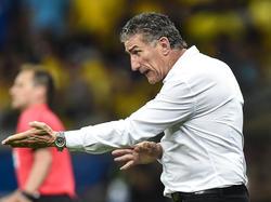 Edgardo Bauza wurde nach nur acht Spielen als Trainer Argentiniens gefeuert