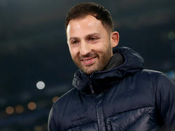 Domenico Tedesco vor Verlängerung beim FC Schalke 04