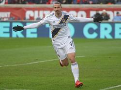 Zlatan Ibrahimovic hat die WM offenbar längst nicht abgeschrieben