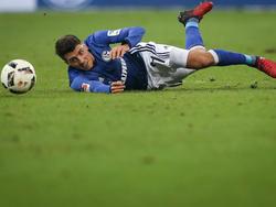 Nach drei Spielen ohne Sieg ist Schalke auf dem Boden der Tatsachen angekommen