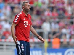Tim Walter übernimmt wohl den Trainerposten bei Holstein Kiel