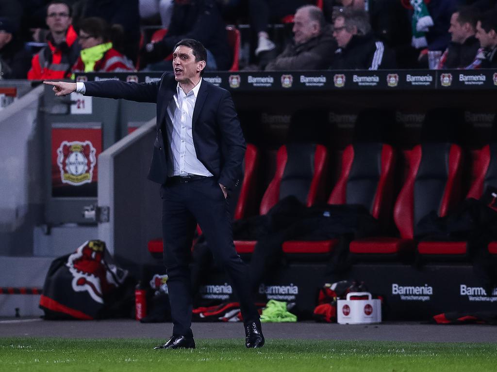 Leverkusens Trainer Tayfun Korkut feiert sein Champions-League-Debüt