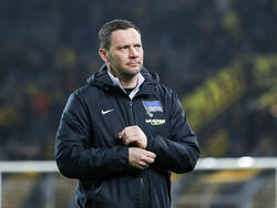 Hertha-Coach Pál Dárdai will den Fans gegen Schalke einen Sieg schenken