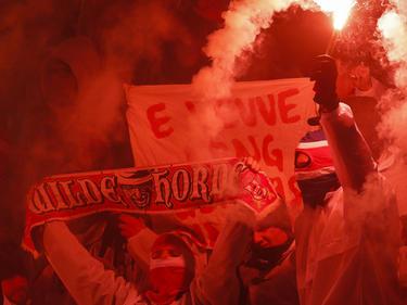 Kölner Anhänger sorgten in Belgrad für Ärger