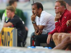Jos Luhukay wird wohl nicht Trainer beim FC Ingolstadt