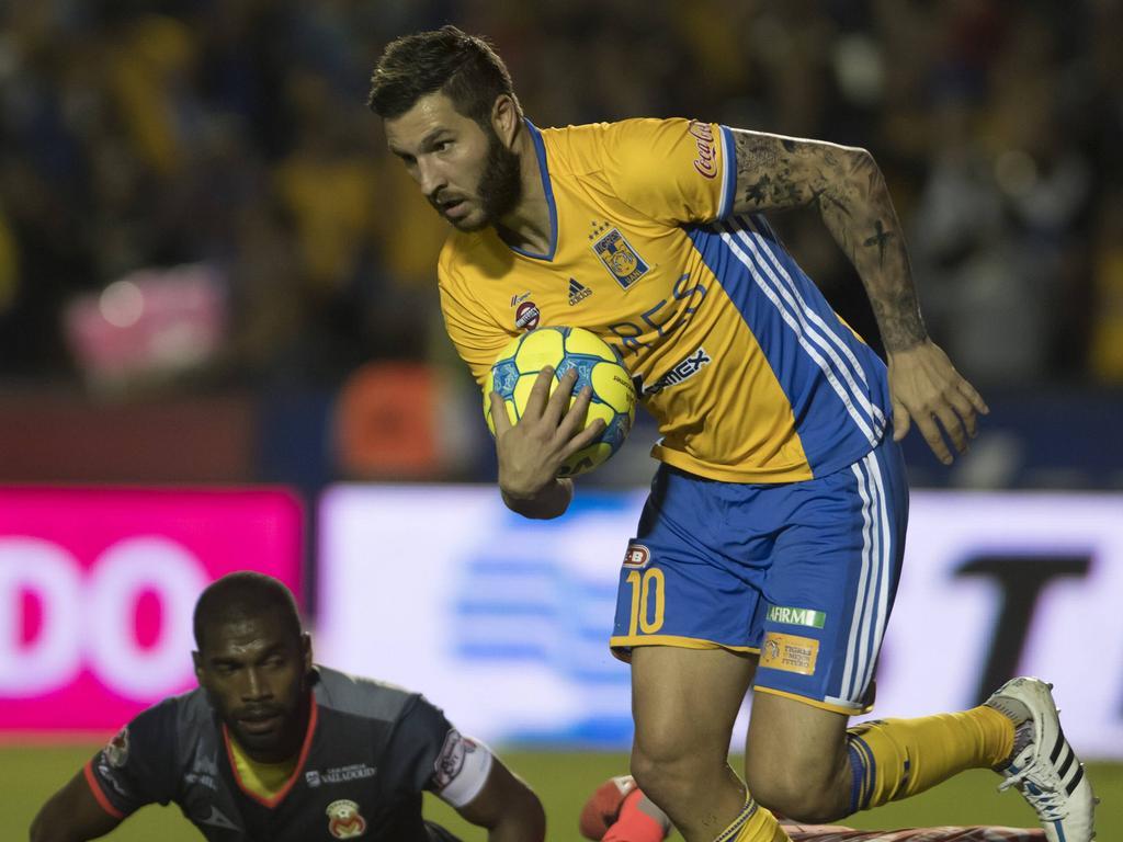 El delantero de los Tigres Gignac. (Foto: Imago)
