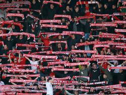 RW Erfurt wird in der Regionalliga den Neuanfang wagen