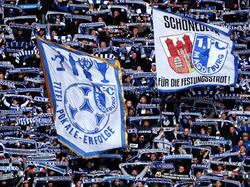 Die Fans des 1. FC Magdeburg haben ihrem Klub einen Bärendienst erwiesen