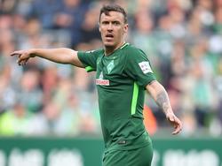 Ist für das Bremer Gastspiel in Stuttgart einsatzfähig: Stürmer Max Kruse
