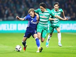 Thomas Delaney (r.) musste zur Halbzeit gegen Schalke raus