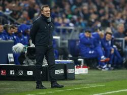 André Breitenreiter war mit dem Punkt auf Schalke zufrieden