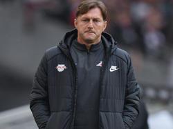 Ralph Hasenhüttl will gegen Zenit St. Petersburg keinen Spieler schonen