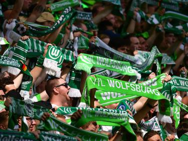"""Die Fans des VfL Wolfsburg erheben sich gegen Vorwürfe der """"taz"""""""