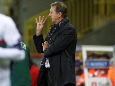 Nachfolger vonBernd Storck als Nationalcoach in Ungarn: Georges Leekens
