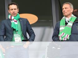 """Sie liegen laut Ex-Sportchef """"im Bett mit den Ultras"""""""