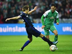 Florian Grillitsch (r.) steht Werder Bremen nicht zur Verfügung