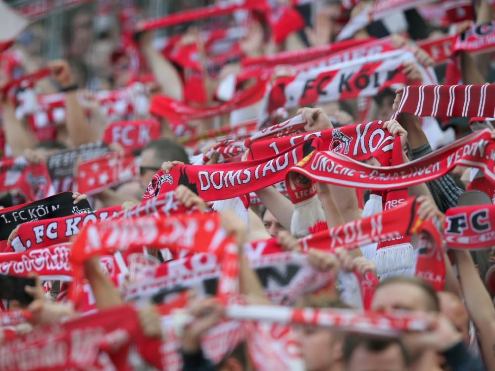 Die Fans des 1. FC Köln fielen letzte Saison negativ auf