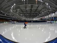 Eisschnellläufer Thom van Beek muss eine Sperre absitzen