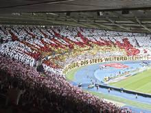 Gespielt wird im Ernst-Happel-Stadion