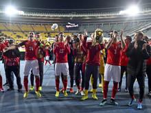 ÖFB-Team nach dem Heimsieg gegen Israel