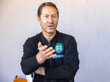 Teamchef Franco Foda ist zum Improvisieren gezwungen