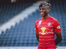 Junior Adamu: Auf seine Torgefahr baut Österreichs U21