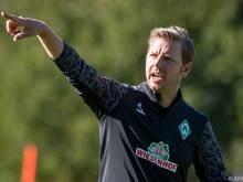 """Bremens Coach hat """"große Lust auf das Spiel"""""""