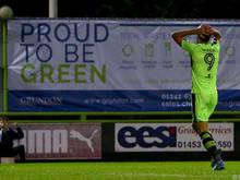 """Forest Green Rovers, der """"grünste"""" Fußballclub der Welt"""