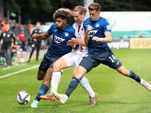Baumgartner will mit Hoffenheim einen Europacupplatz erreichen