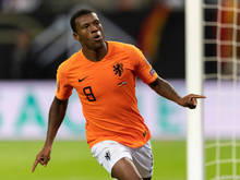 Liverpool-Star Wijnaldum im Dress der Holländer