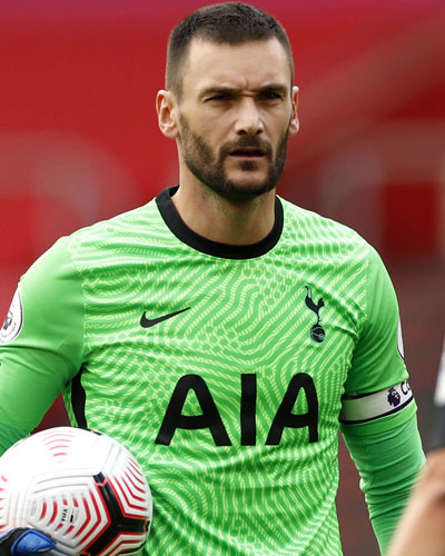 Image result for hugo lloris