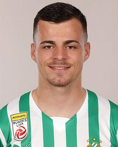 Dragoljub Savić