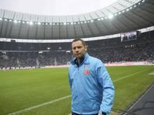Pal Dardai coacht Hertha BSC und die Ungarn