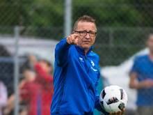 Darmstadts Trainer Norbert Meier will noch einige neue Spieler holen