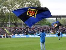 Koblenz ist auf der Suche nach einem Spielort für das Pokalspiel gegen Dynamo Dresden